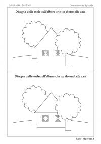 Davanti - Dietro - Albero