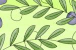 rami di ulivo